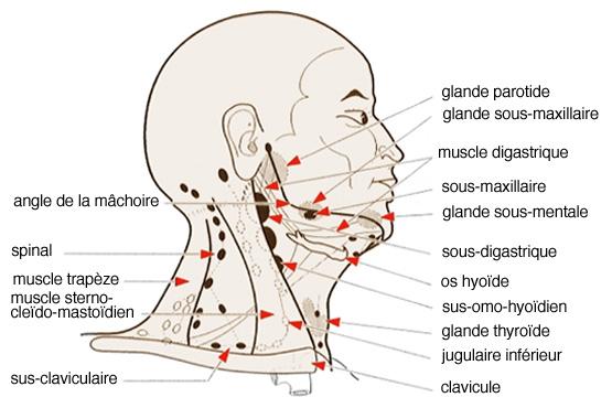 You are currently viewing Ce sont des signes évidents de cancer du larynx